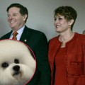 Tom DeLay's post-'Dancing' plans including hitting the road in his RV with wife Christine and the couple's two Bichons