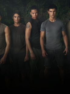 The wolfpack - Taylor Lautner, Alex Meraz, Kiowa Gordon, Chaske Spencer, and Bronson Pelletier - in 'New Moon'