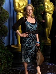 Actress Meryl Streep poses at the 82nd annual Academy Awards Nominee Luncheon at Beverly Hilton Hotel on February 15, 2010 in Los Angeles, California.