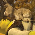 Shrek and Donkey in 'Shrek Forever After'