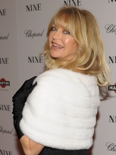 Former New York go-go dancer, Goldie Hawn, while born in Washington D.C., was raised in Tacoma Park, Maryland, where she dabbled in many forms of the arts.