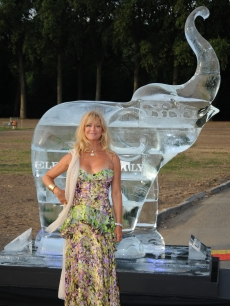 Goldie Hawn attends The Elephant Parade auction in aid of The Elephant Family at Royal Hospital Chelsea, London, June 30, 2010