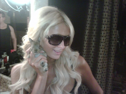 Paris Hilton is seen with a baby rabbit on September 21, 2010 