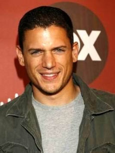 Wentworth Miller smiles on the Fox carpet in LA