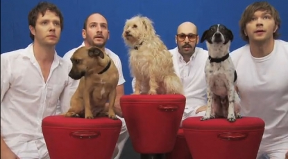 "OK Go appear with furry friends in the video for their latest hit, ""White Knuckles"""