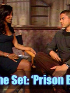 prison break wentworth miller FLASH
