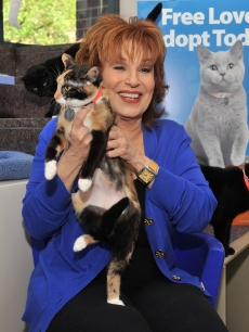Joy Behar attends the Adopt-a-Shelter Cat month launch at the ASPCA Headquarters, New York City, on June 3, 2011
