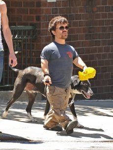 Peter Dinklage walks a dog in New York City, May 30, 2011