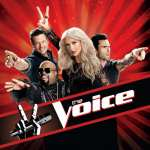 'The Voice' judges in a promo shot for Season 2, 2012