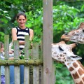 Katie Holmes and Suri Cruise feed giraffes at the Bronx Zoo in New York City on July 28, 2012
