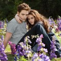 Robert Pattinson and Kristen Stewart are seen in a scene from &#8216;The Twilight Saga: Breaking Dawn &#8212; Part 2&#8217;