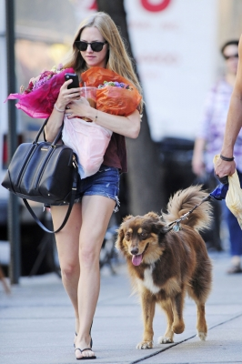 Amanda Seyfried is spotted picking up flowers with her adorable dog in New York City on August 29, 2012