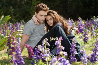 Robert Pattinson and Kristen Stewart are seen in a scene from 'The Twilight Saga: Breaking Dawn — Part 2'