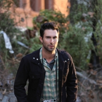 Adam Levine in Season 2 of FX's 'American Horror Story'