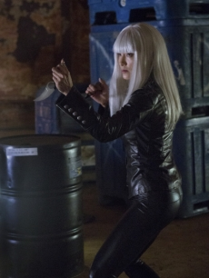 Kelly Hu as China White in Episode 2, Season 1 of 'Arrow'