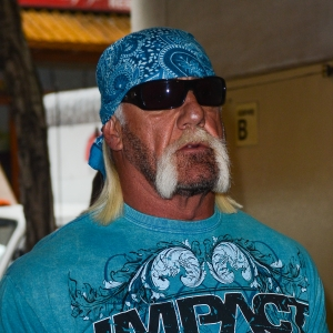 hulk hogan settles sex tape lawsuit with bubba the love. Black Bedroom Furniture Sets. Home Design Ideas
