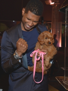 Usher Raymond IV attends the second annual Pencils of Promise Gala at Guastavino's in New York City on October 25, 2012