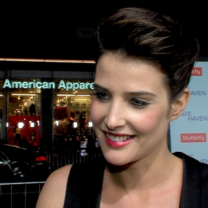 Cobie Smulders 'Very Happy' About How I Met Your Mother Getting One More Season