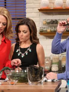 Jeri Ryan cooks up some healthy treats on Access Hollywood Live on February 19, 2013