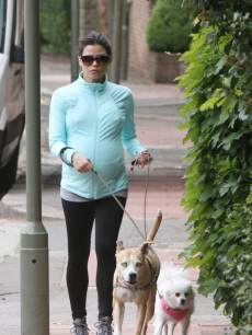 Pregnant Jenna Dewan-Tatum takes her dogs for a walk in London on May 17, 2013