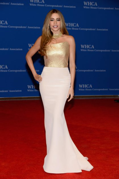 Sofia Vergara attends the 100th Annual White House Correspondents' Association Dinner at the Washington Hilton on May 3, 2014 in Washington, DC (Getty)