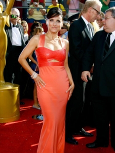 Julia Louis-Dreyfus strikes a red carpet Emmy pose 