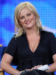 Amy Poehler talks to the media about her upcoming show on NBC, Jan. 15, 2009