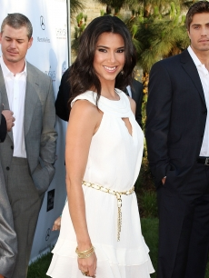 Roselyn Sanchez attends the Seventh Annual Crysalis Butterfly Ball on May 31, 2008 in Brentwood, California