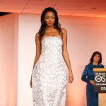 Maria Pinto&#8217;s Oscar gown hits the runway