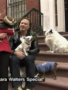 Mickey Rourke interviewed by Barbara Walters surrounded by his dogs outside of his NYC home, including his pug, La Negra
