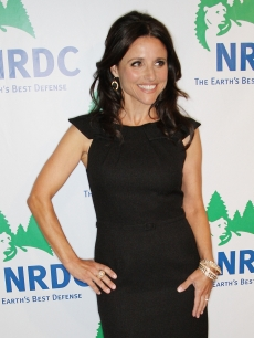 Julia Louis-Dreyfus sports an LBD at the National Resources Defense Council 20th Anniversary Celebration at the Beverly Wilshire Hotel on April 25, 2009