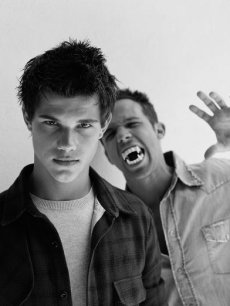 Taylor Lautner and Cam Gigandet from 'Twilight'