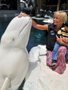 Jaime Pressly and her 2-year-old son, Dezi, meet Ferdinand the beluga whale during a Mother's Day visit to SeaWorld San Diego's Wild Arctic attraction