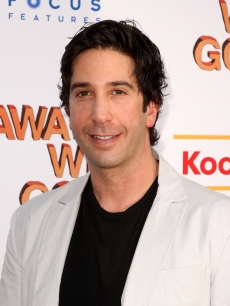 David Schwimmer attends a special New York screening of 'Away We Go' at Landmark's Sunshine Cinema on June 1, 2009