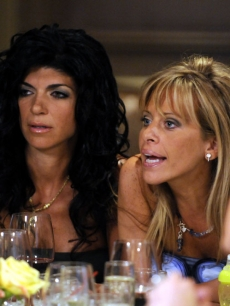 Teresa Giudice and Dina Manzo on Bravo's 'The Real Housewives of New Jersey'
